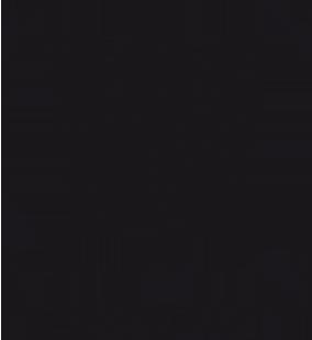 wookieestudio