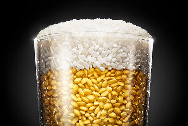 Biova Leggera _ Rice Beer